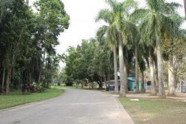 Parque-Ecológico-Tietê-570x380