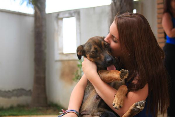 Adote e receba amor - Veronica Peuckert, de 11 anos, resgata cães e gatos abandonados | catia62@interair.com.br