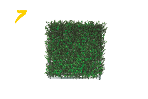 7. Coiso verde